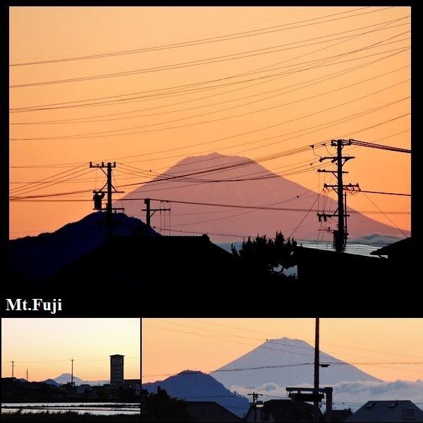 朝焼けに富士山くっきり、白鷺パクリ。ウォーキングMS④95日目