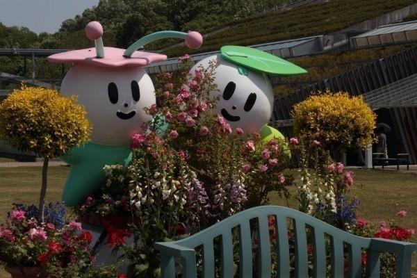 花フェスタ記念公園オフ会・当日の確認です