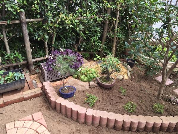 我が家の庭。やっとほぼ完成に近づきつつ( ^ω^ )?