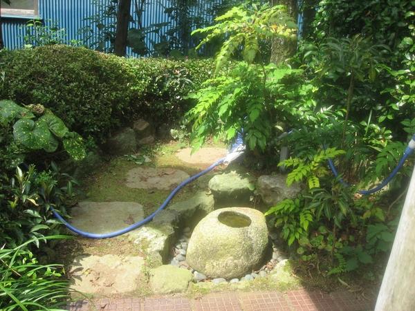 庭の様子。