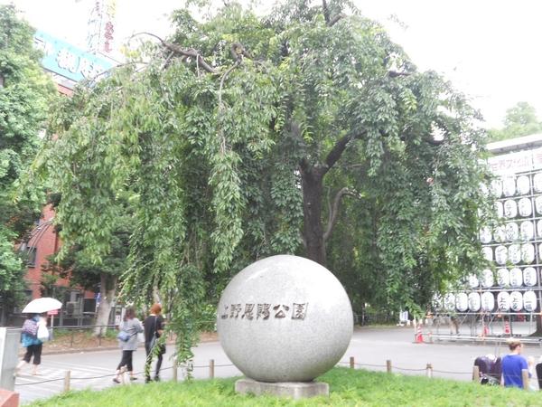 上野恩賜公園で熱中症(◎_◎;)