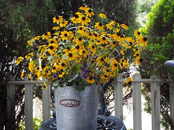 黄色い花とレモンバーベナ