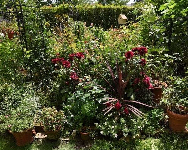 赤の庭と青の庭