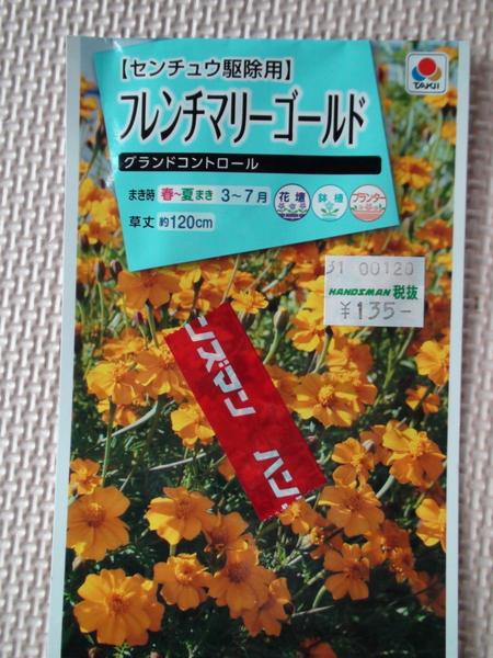 緑肥のマリーゴールド みんなの趣味の園芸 Nhk出版 やっぱり花が好きさんの園芸日記