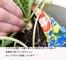 水耕ダイコンの袋栽培