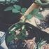 ランハーツ(挿し木)