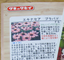 エキナセアをタネから咲かせよう!